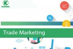 Tuyển dụng Trade Marketing T12